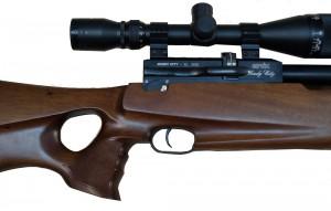 new_gun_34-2